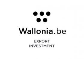 """Logo """"AWEX - Agence wallonne à l'exportation et aux investissements étrangers"""""""